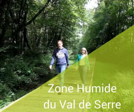 bouton zone humide